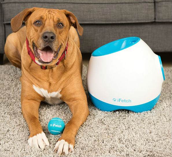 Ifetch Too Ball Launcher Dog Toy